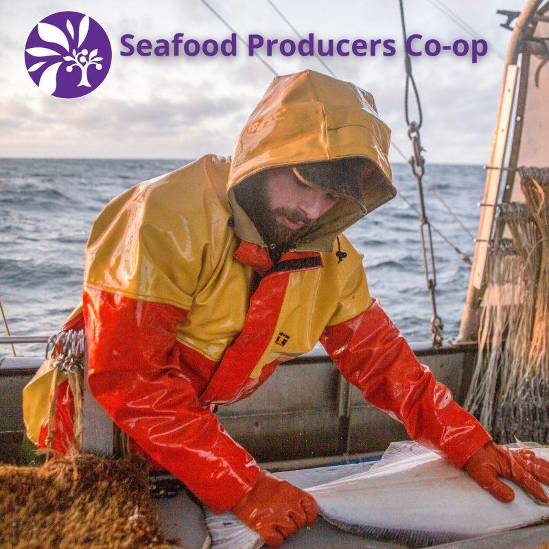 Sustainable, Wild Caught Alaskan Seafood