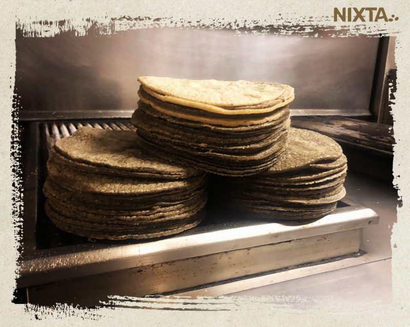 pile of white and blue corn tortillas